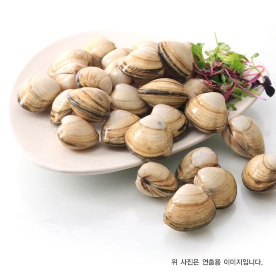 동죽(1kg)