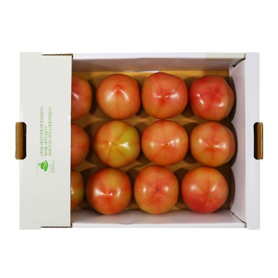 정직선별토마토(1.5kg)