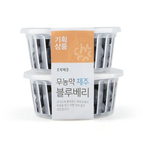 [기획]무농약제주블루베리묶음(100g×2)
