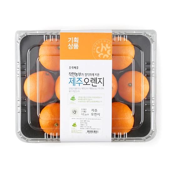 [빅세일!기획]착한농부제주오렌지(팩/8~12입)
