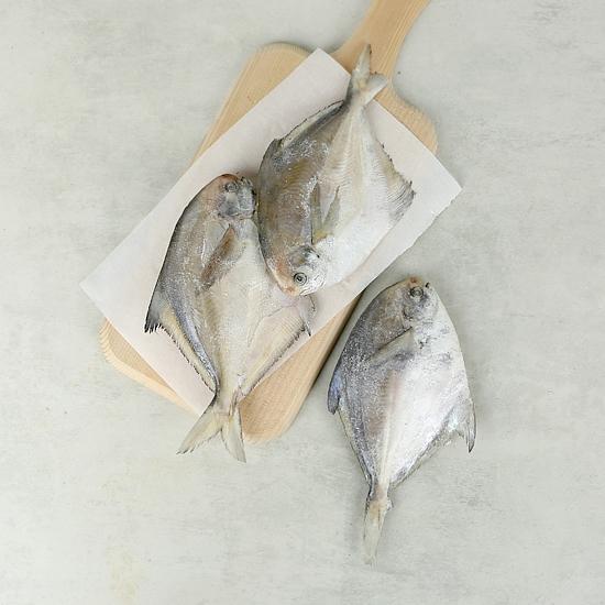 여수햇참병어(구이용/480g)
