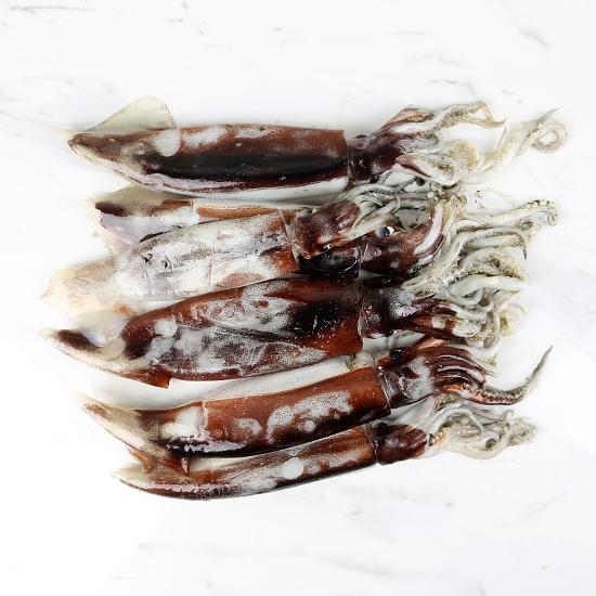 햇 구룡포 오징어(2kg)