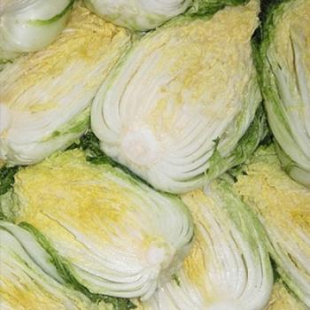 무농약배추로절인절임배추(10kg)