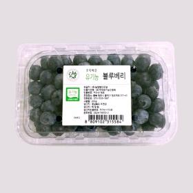 유기농블루베리(200g)