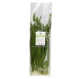 유기농부추 (170g)