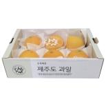 [기획]무농약황금향(박스/1.5kg)