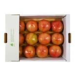 착한농부토마토(1.5kg)