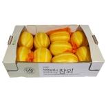 [기획]착한농부참외(3kg)