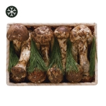 자연산냉동송이버섯세트