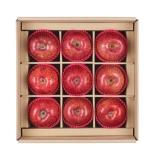 착한농부아름드리세트(사과)