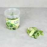 유기농간편대파 (150g)