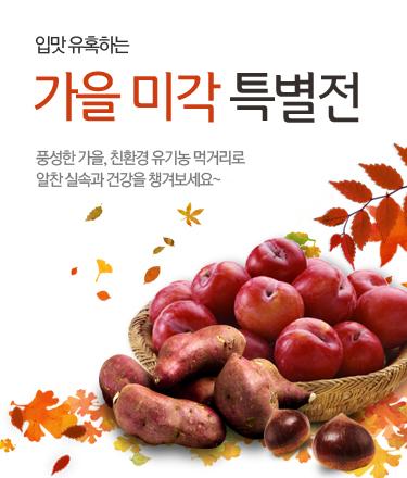 가을미각 특별전