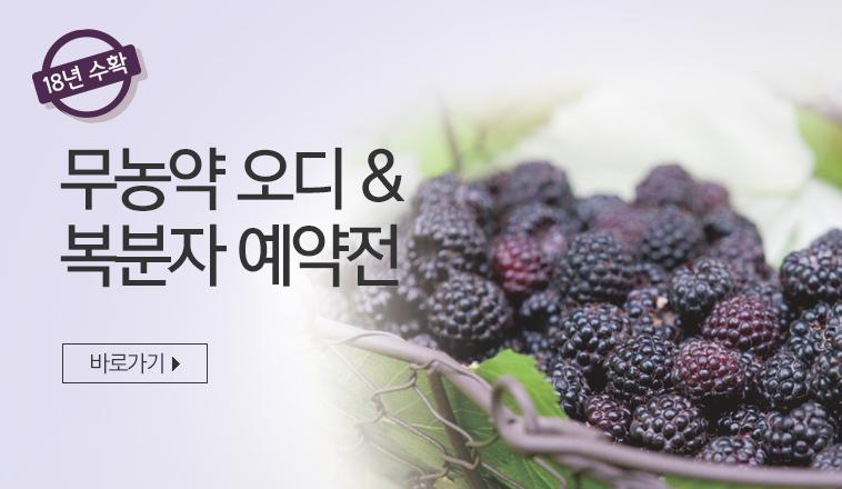 무농약 오디&복분자 예약