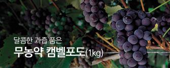 무농약캠벨포도(1kg)