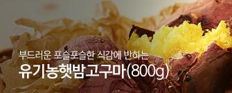 유기농햇밤고구마 (800g)