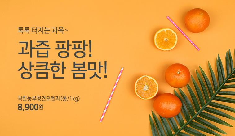 착한농부청견오렌지(봉/1kg)