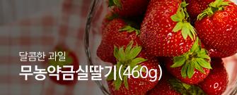 무농약금실딸기(460g)