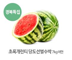 초록개런티 당도선별수박7KG 미만